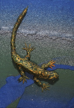 Pr30:28, lizard polymer clay relief sculpture, Sara Joseph