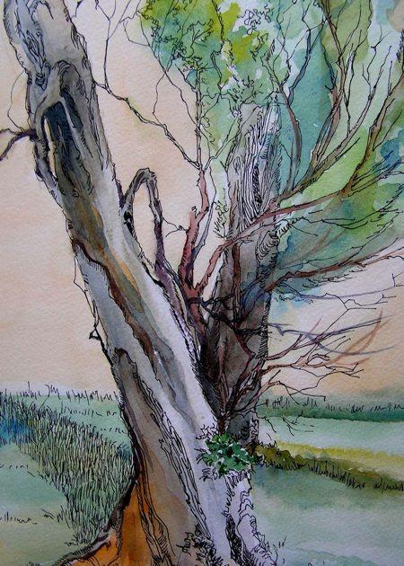 Steadfast, Pen, Ink and Watercolor, Sara Joseph