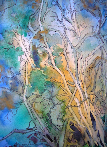 The Voice of the Woods, Watercolor and Ink by Sara Joseph