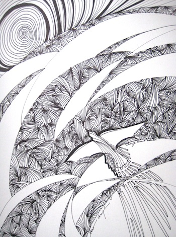 Soar, Pen and Ink, Sara Joseph