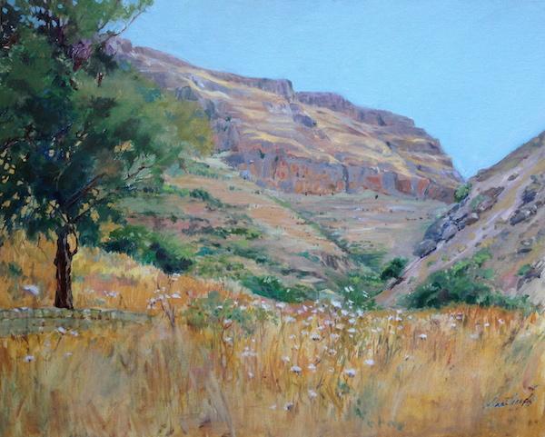 Valley of Decision, Oil, Sara Joseph, Galilee, Jesus Trail