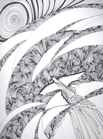 Soar, Pen and Ink, Sara Joseph